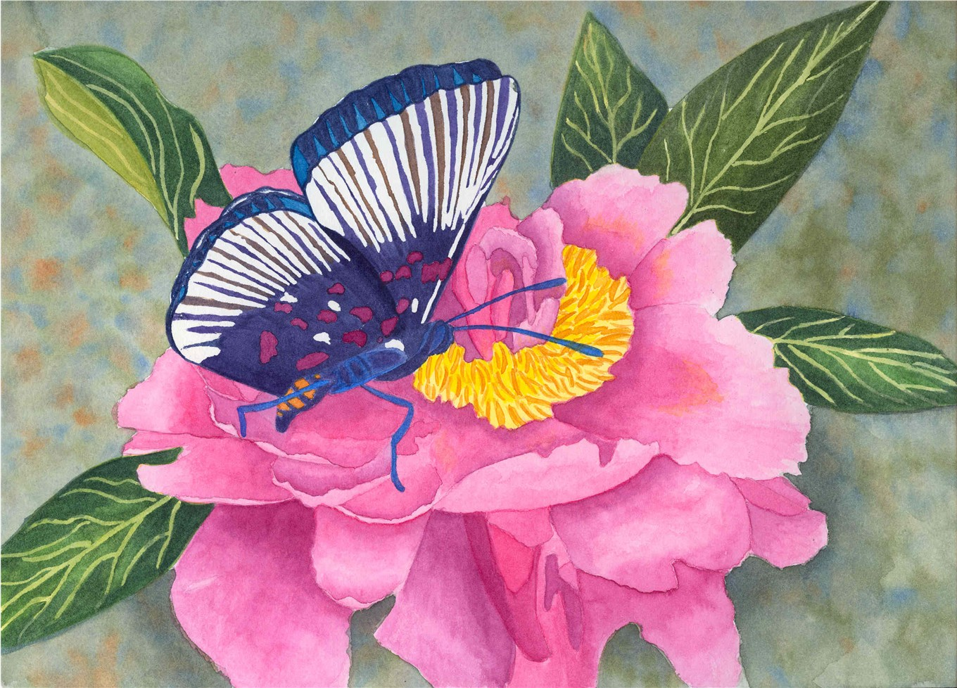 Butterfly on a flower painting for Butterfly on flowers